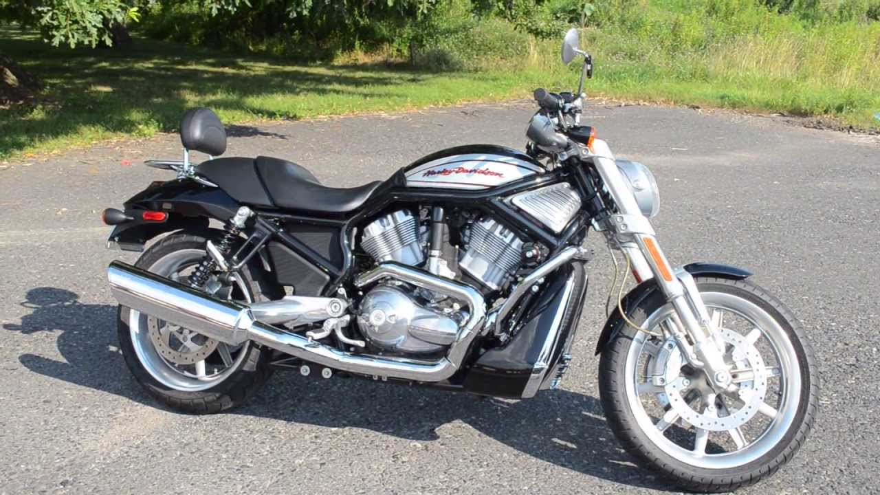 Harley Davidson Vrscr For Sale