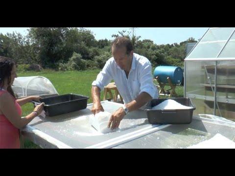 Adding a Pinch of Success at the Amagansett Sea Salt Company