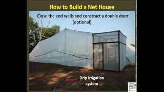 How to Build a Net House for Insect Pest Exclusion