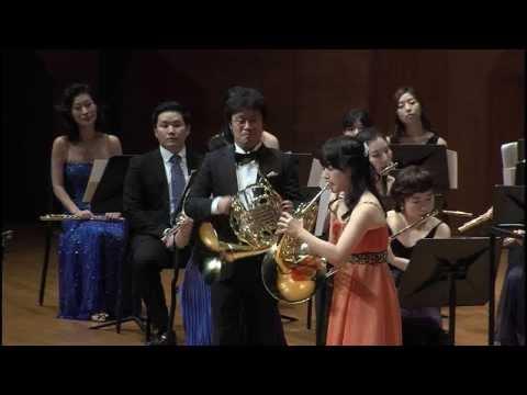 Mozart Horn Concerto No. 1  K.412  in D major, I. Allegro