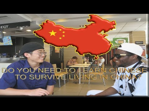 Can You Survive In China Without Speaking Chinese? (Social Experiment)