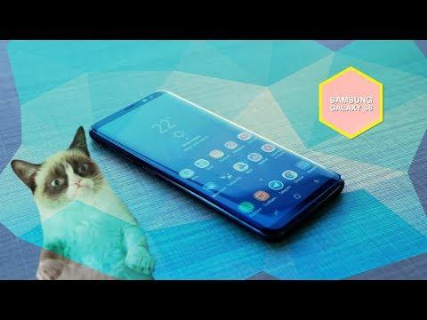 Как купить Samsung Galaxy S8 на AVITO ДЕШЕВО и не стать ЛОХОМ