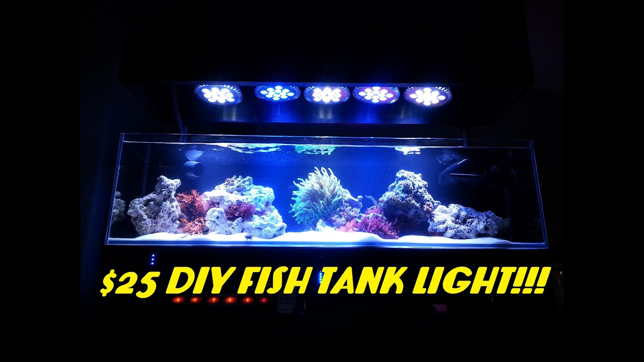 25 diy fish tank light abi 12 watt blue white par38