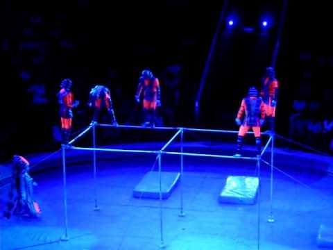 Moscow Circus High bar act