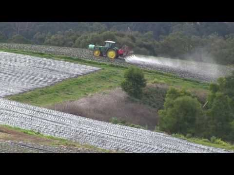 Seed Freedom, Permaculture and the March Against Monsanto - David Holmgren