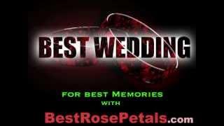 Wedding Flowers, Fresh Roses, Rose Petals (Red Silk Rose Petals)