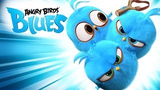 Angry Birds Blues   All Episodes Mashup   Special Compilation  2019 by For KIDS TV full HD  07
