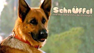Schnüffel und das geheime Spukschloss (Kinderfilm, deutsch, Film für Kinder, Hundefilm, Tierfilm)