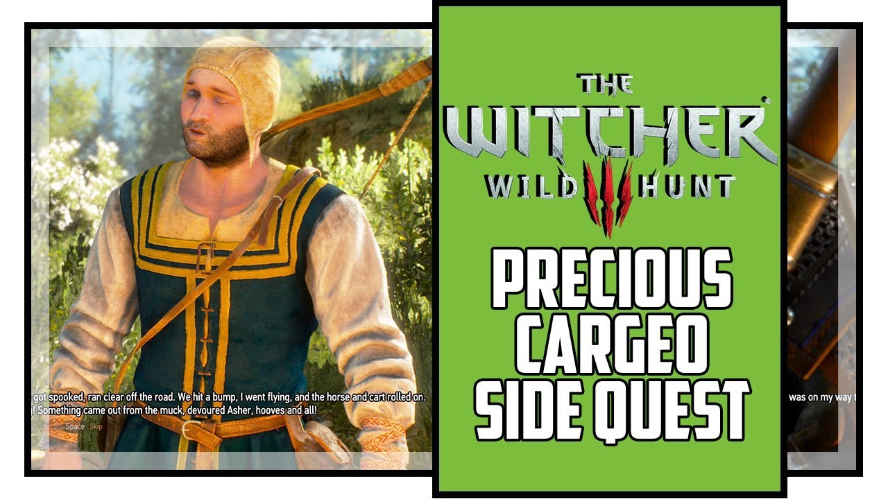 Download The Witcher 3 Precious Cargo Side Quest (All Choices)