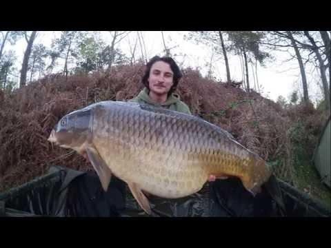 "N°7 Session ""gros fish"" avec La Globe (Jeremy Planson team MTC Baits)"
