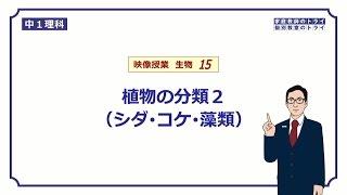 【中1 理科 生物】シダ・コケ・藻類の分類 (13分)