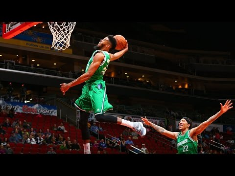The Top 10 NBA D-League Plays of 2016!