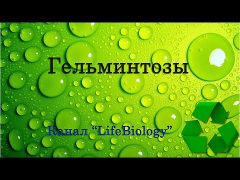 Лёгкие - очищение лёгких