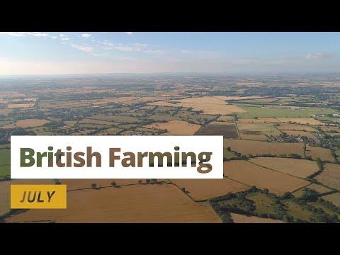 British Farming | 12 Months On A UK Farm: July