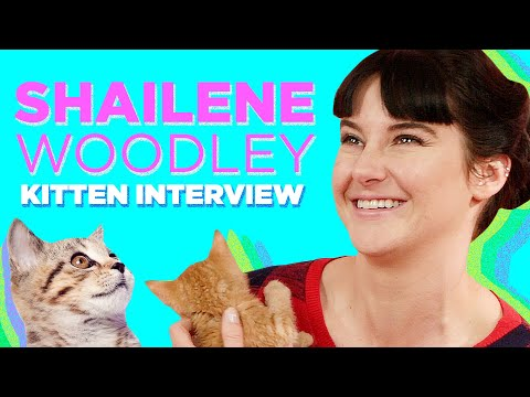 Shailene Woodley Plays With Kittens While Answering  Questions
