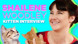 Shailene Woodley Plays With Kittens (While Answering Fan Questions)
