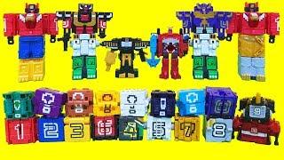 파워레인저 애니멀포스 장난감 가챠 캡슐 큐브 애니멀킹 와일드킹 라이드킹 오션엠페러 합체 Power rangers Doubutsu Sentai Zyuohger Toys