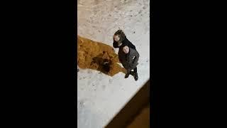 Пьяная девка ссыт перед домом