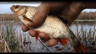 Моя рыбалка на удочку весной. Рыбалка на Пасху
