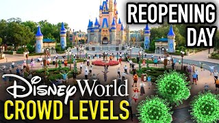 DISNEY WORLD CROWD LEVELS Reopening Day at the Magic Kingdom!