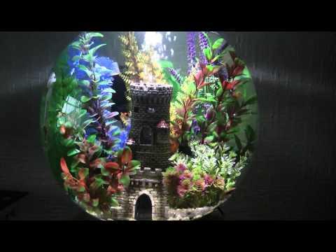 BIORB FISH TANK