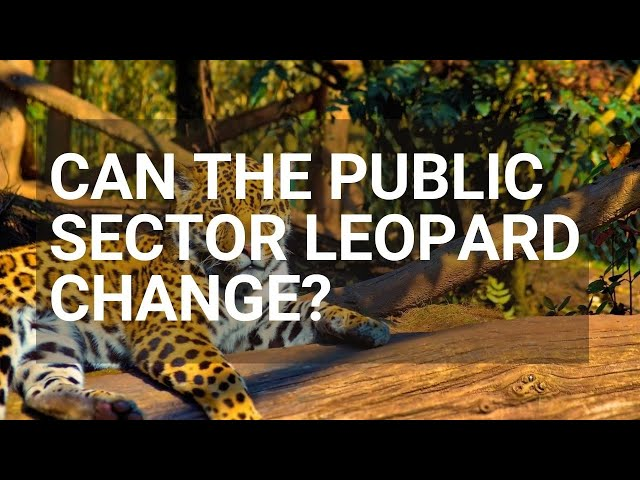 The Public Sector Leopard