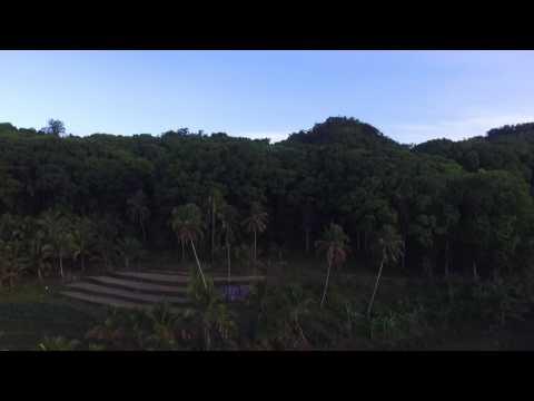 Rice fields in San Isidro, Sierra Bullones, Bohol, Philippines