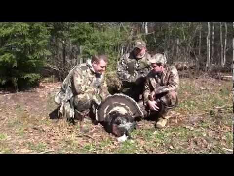 Bow Hunting Tenn Turkey