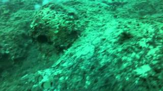 The Island of Crete, Greece  Scuba Diving Stavros with GoPro(, 2012-12-21T23:05:54.000Z)