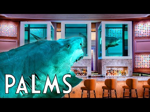 SHARK TANK Las Vegas Palms Casino NEW Bar Restaurants