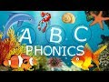 Underwater Animal ABC Phonics Song: Learn Letters, Phonics and Animals