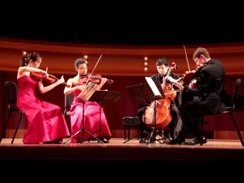Leyendas: An Andean Walkabout, VI. Coqueteos, played by Evelyn  with Liedergeld Quartet
