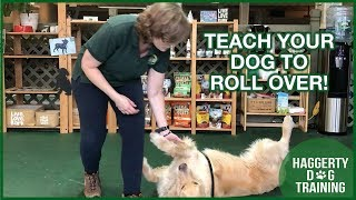 Teach Your Dog to ROLL OVER!