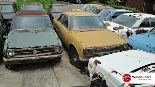 MADNESS! A collection of rusting, classic JDM's - Honda Coupe 9's, 510 Datsun Bluebirds...