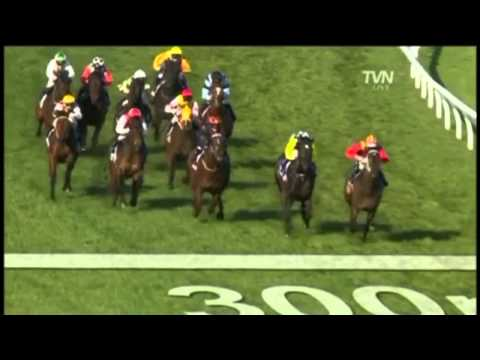 2010 Memsie Stakes - So You Think