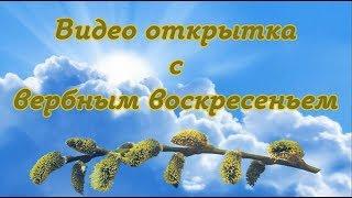 Видео открытка Поздравление с вербным воскресеньем