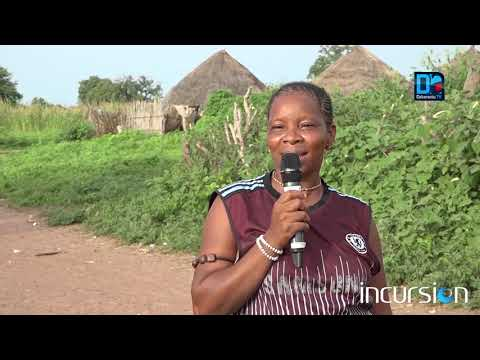Incursion á Tambacounda: les réalisations du Pudc saluée par les populations