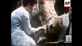 Repeat youtube video Italy - Marco Aurelio