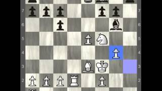 how to play chess like  Judit Polgar vs Garry Kasparov 1-0_Sunday Chess Tv I chess I cờ vua