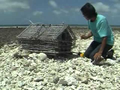 Kiribati - Glimpses of North Tarawa Atoll