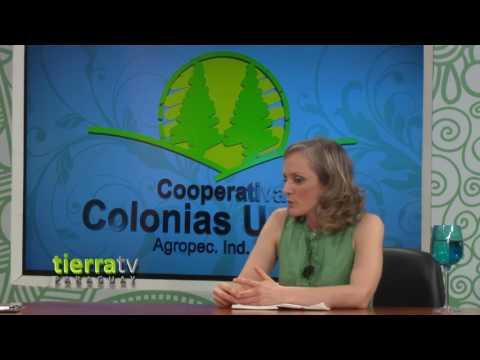 TIERRA TV PARAGUAY - AGRICULTURA Y EXPORTACIÓN DE PRODUCTOS ORGÁNICOS DE PARAGUAY