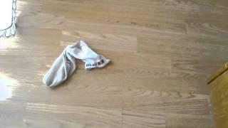 Cum sa arunci o soseta murdara pe podea(how to drop a dirty sock on the floor)