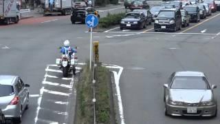 信号待ちの車列をすり抜けしてきたバイクが捕まる瞬間 thumbnail