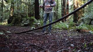 Recording Wood Debris with a Pair of LOM Usi Pro's near Redwoods National Park in California