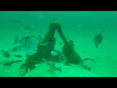 Scouting Artificial Reefs With Trident ROV - Pensacola Fishing