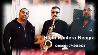 Radu Pantera Neagra - Pe nisipul de la mare ( Contact 0743687036)