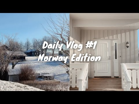 Daily Vlog in Norway    SUPER REALISTIC! shopping's for a new apartment in Oslo