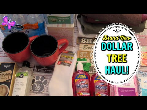 DOLLAR TREE HAUL!  Amazing New Finds! January 10, 2020 | LeighsHome