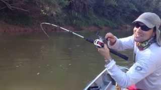 Pesca de Pacuzão no rio Paracatu