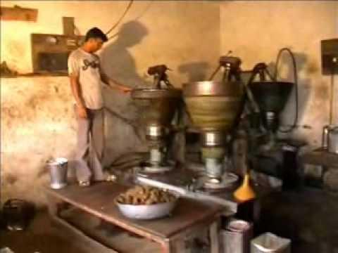 Oil Ghani Machine, kohlu, Traditional oil ghani machine Demostration